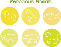 Ferocious. Animals  wildlife collection Royalty Free Stock Image