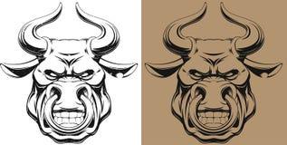 Ferocious bull Stock Photography