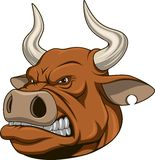 Ferocious bull Stock Photos