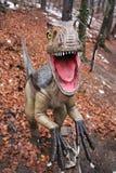 Ferocious dinosaur -. Ferocious  dinosaur portrait at Rasnov Dino Parc, Brasov County, Romania Royalty Free Stock Photos