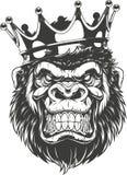 Ferocious gorilla head. Vector illustration, ferocious gorilla head on with crown, on white background Royalty Free Stock Photos