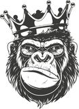 Ferocious gorilla head. Vector illustration, ferocious gorilla head on with crown, on white background Stock Photo