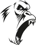 Ferocious gorilla head. Vector illustration, label of a fierce gorilla, outline, on a white backgroundn Stock Image