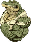 Ferocious strong crocodile. Vector illustration, a ferocious alligator bodybuilder athlete posing, showing large biceps Stock Image