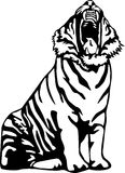 Ferocious tiger. Black and white Illustration of a tiger roaring Royalty Free Stock Photos