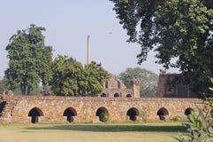 Feroz schah Kotla, New Delhi Royaltyfria Foton