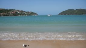 Ferradura beach in Buzios, Brazil stock video