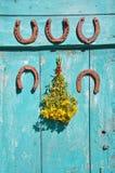 A ferradura cinco oxidada na parede e no wort médico de St Johns floresce Fotos de Stock
