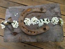 Ferradura da dobra com as flores no fundo de madeira Fotografia de Stock
