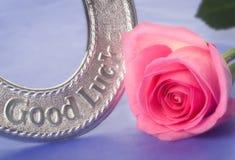 A ferradura e a cor-de-rosa do casamento da boa sorte levantaram-se Imagem de Stock Royalty Free