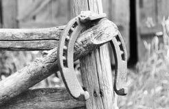 Ferradura oxidada antiga fixada em pregos na superfície de madeira velha Imagens de Stock Royalty Free