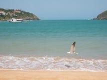 Ferradura plaża w Buzios, Brazylia obraz royalty free