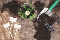 Ferramenta de jardim, pá, ancinho, lata molhando, cubeta, tabuletas para o pla Foto de Stock Royalty Free