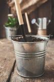 Ferramenta de jardim, pá, ancinho, lata molhando, cubeta, tabuletas para o pla Imagem de Stock Royalty Free