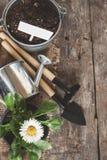 Ferramenta de jardim, pá, ancinho, lata molhando, cubeta, tabuletas para o pla Foto de Stock