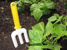 Ferramenta de jardinagem Fotos de Stock Royalty Free
