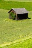 Ferramenta derramada em um prado verde Imagem de Stock