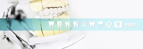 Ferramenta do articulator do conceito do técnico dental com ícones dos dentes e ilustração royalty free
