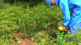 Ferramenta do sistema de extinção de incêndios da bomba do homem do fazendeiro com herbicida Fotos de Stock Royalty Free