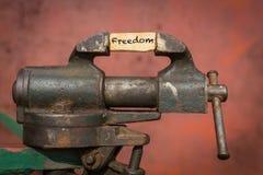 Ferramenta vice com a liberdade da palavra foto de stock royalty free