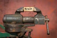 Ferramenta vice com o cérebro da palavra foto de stock