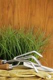 Ferramentas de jardim com grama na madeira Imagem de Stock
