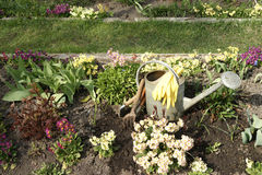 Ferramentas de jardim entre flores da mola fotos de stock