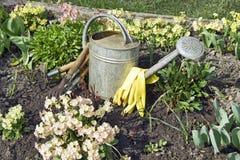 Ferramentas de jardim no fim do jardim acima Imagens de Stock