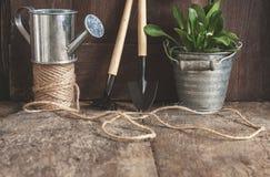 Ferramentas de jardim, pá, ancinho, lata molhando, cubeta, tabuletas para o pl Imagens de Stock Royalty Free