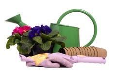 Ferramentas de jardinagem 1 Foto de Stock Royalty Free