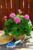 Ferramentas de jardinagem Fotos de Stock Royalty Free
