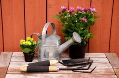 Ferramentas de jardinagem. Imagem de Stock Royalty Free