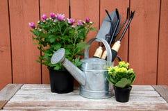 Ferramentas de jardinagem. Fotografia de Stock