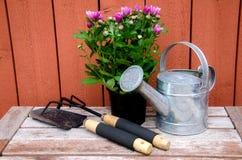 Ferramentas de jardinagem. Fotografia de Stock Royalty Free