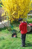 Ferramentas de jardinagem de limpeza Fotografia de Stock