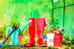 Ferramentas de jardinagem exteriores no jardim Imagens de Stock