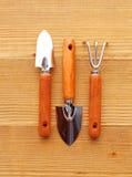 Ferramentas de jardinagem no fundo de madeira Fotografia de Stock Royalty Free