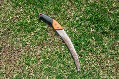 Ferramentas de jardinagem no fundo verde da grama fotografia de stock