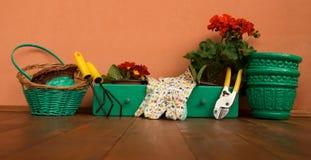 Ferramentas de jardinagem novas, bandeja do bastão Imagem de Stock