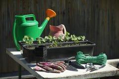 Ferramentas e equipamento de jardinagem Foto de Stock Royalty Free