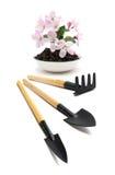 Ferramentas e flor agriculturais Fotografia de Stock Royalty Free