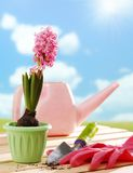 Ferramentas e flor de jardinagem Fotos de Stock Royalty Free