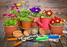 Ferramentas e flores de jardinagem Fotos de Stock Royalty Free