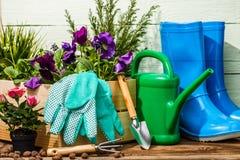 Ferramentas e flores de jardinagem foto de stock