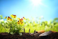 Ferramentas e flores exteriores de jardinagem Imagens de Stock