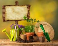 Ferramentas e plantas exteriores de jardinagem Fotos de Stock