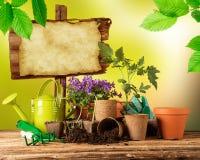 Ferramentas e plantas exteriores de jardinagem Fotografia de Stock Royalty Free