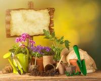 Ferramentas e plantas exteriores de jardinagem Imagens de Stock