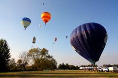 Ferrara Hot Air Balloons Festival 2008 Stock Image