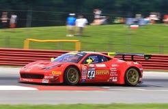 Ferrari chaufför Anthony Lazzaro Arkivfoto